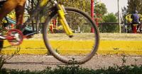 Public Park With Bikes In Foreground