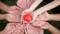 Um grupo de mãos segurando um coração vermelho.