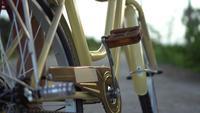 Jonge vrouw met fiets die in het park loopt te ontspannen en uit te oefenen