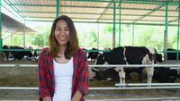 Belle femme asiatique ou un agriculteur avec et des vaches dans l'étable sur le concept de la ferme laitière-agricole et l'élevage.