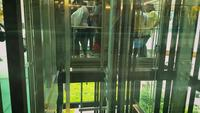People Using Elevators At The Mall