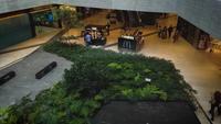 Ascensor subiendo en el centro comercial