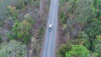 Luftschuß des Autofahrens durch Forest Road