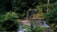 Bergregenwald Wasserfälle und kristallklares Wasser