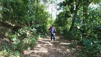 Young man hiking in tropical jungle with backpack.