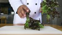 Close up of chief man making salad healthy food and chopping lettuce on cutting board.