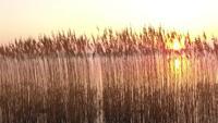 Vogelperspektive des Hubschrauberfliegens während des herrlichen Sonnenuntergangs in Deutschland