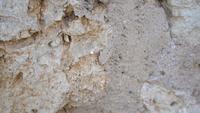 Bakgrund av gammal stenmur textur