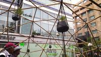 Eco-friendly-bamboo-installation-3408