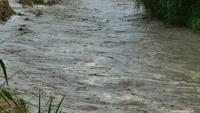 De gevaarlijke overstroming van het water valt in het regenseizoen