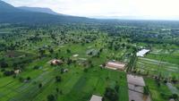 Vista aérea de tiro ancho punto de vista de la montaña con árboles frondosos