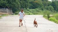 Kvinna joggar i parken