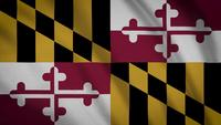 maryland statlig flagga