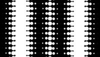 Dynamisch zwart en wit in een lus