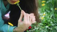 Mujer hermosa en el prado