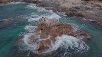 Corvos marinhos na rocha no mar em 4K