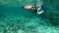 Fütterungsfische eines Mannes mit dem Brot Unterwasser im Meer in Korsika in 4K