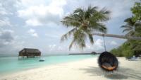 Belle plage tropicale sur l'île des Maldives