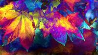 Kleurrijke Autumn Foliage Art Background