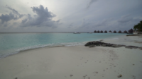 Tropical Beach at Maldives Island