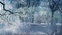 Fondo de animación de paisajes de invierno