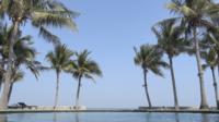 Buitenzwembad Met Palmbomen