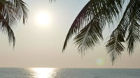 Solnedgång på stranden