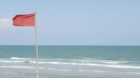 Fluttering Red Flag At The Beach
