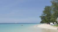 Tropisk strand med folkdykning