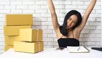 Frau, die Produkte online verkauft