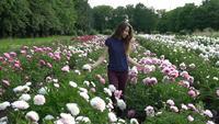 Jovem mulher andando em um campo de peônias