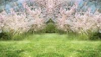 Fantasy Springtime Garden