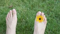 Füße Einer Frau Auf Dem Gras