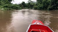 Långsvansad båt som går nerför floden
