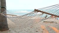 Hammock At The Beach