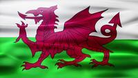 Loop de bandeira do país de Gales