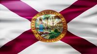 Florida Flagga Loop