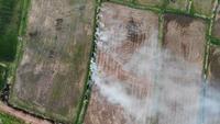 Ein Reisfeld Mit Rauch