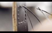 Macro 4k de tiras de couro com fio preto