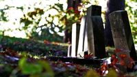 The Autumn Cemetery