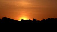 Timelapse du lever du soleil sur les arbres