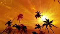 animação paraíso das palmeiras
