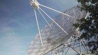 Radioteleskop bakom ett träd