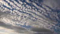 AltoCumulus nubes en el fondo de un cielo despejado