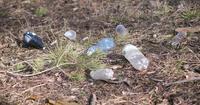 Plastikflaschen und andere nicht abbaubare Abfälle im Gras