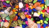 Poissons dans l'eau d'aquarium