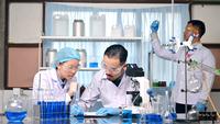 Équipe de scientifiques recherchant et étudiant en laboratoire