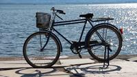 Bicycle Standing Near The Seaside