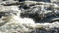 Wild River Bakgrund