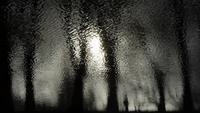 Lago escuro espelhar árvores e pessoas
